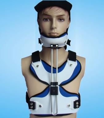 雙柱頭頸胸